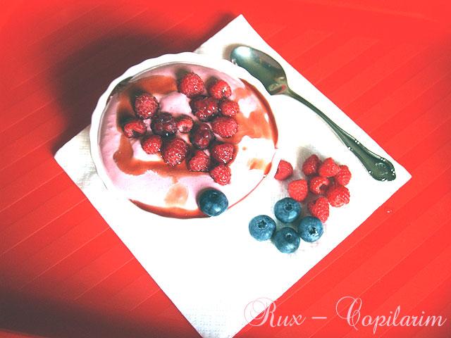 spuma din fructe