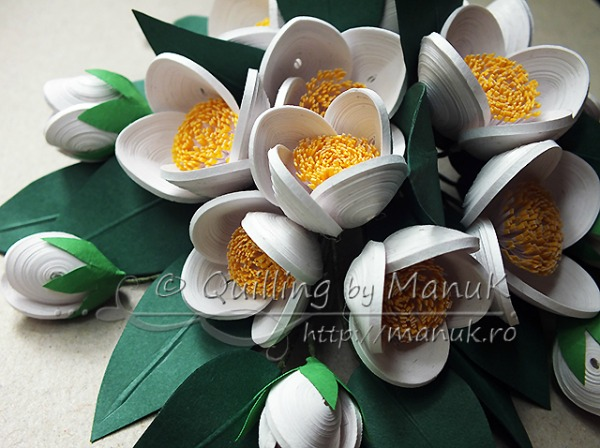quilled-jasmine-flowers-detail-1