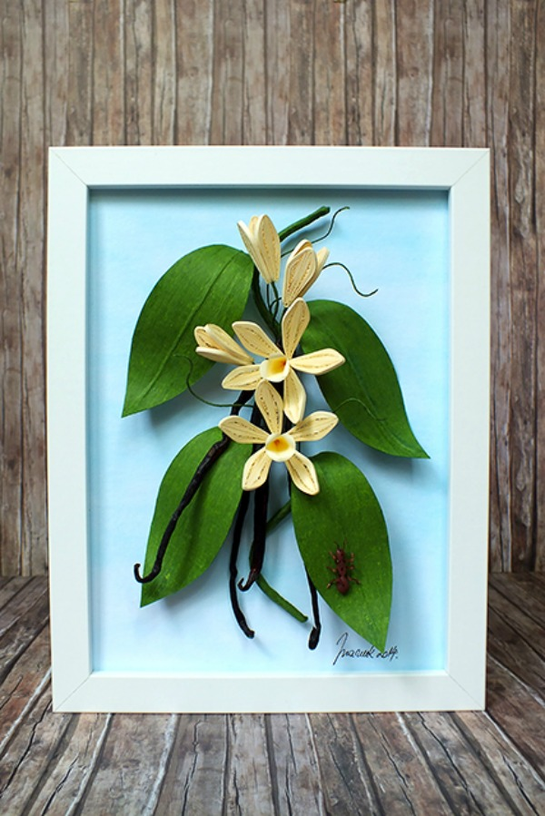 quilled-vanilla-orchid