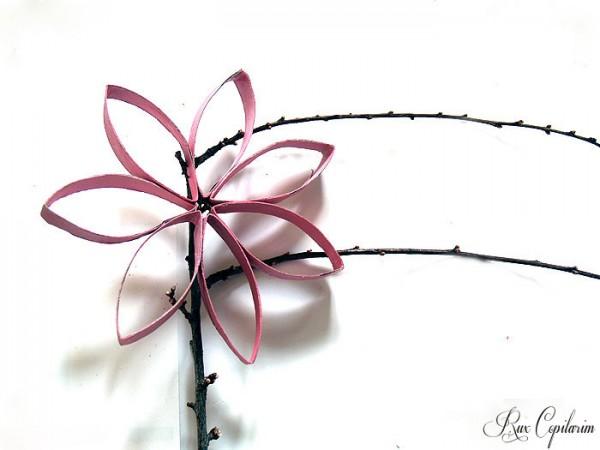 Copilarim-Floare