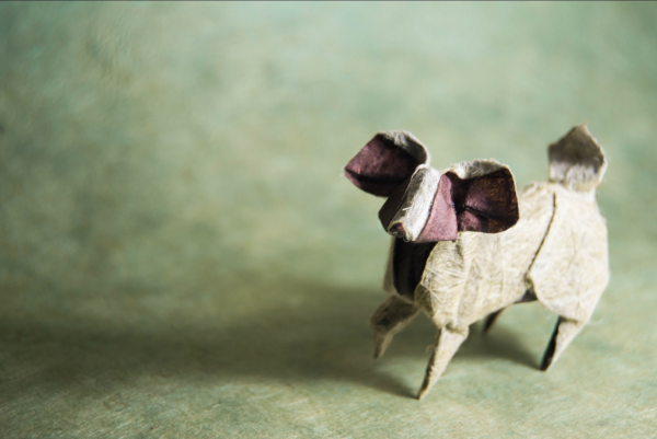 """""""Origami Papillon Dog"""" design - Miyajima Noboru, pliat de Gonzalo Garcia Calvo"""