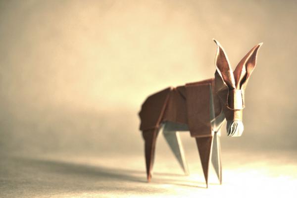 """""""Origami Donkey """" design - Román Díazde, pliat de Gonzalo Garcia Calvo"""